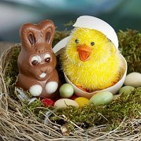 easter-nest-2157015_1280 - Copy